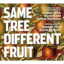 Same Tree Different Fruit plays ABBA